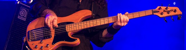 Bassiste live