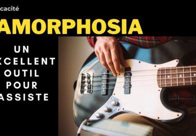 Jamorphosia un excellent outil pour Bassiste